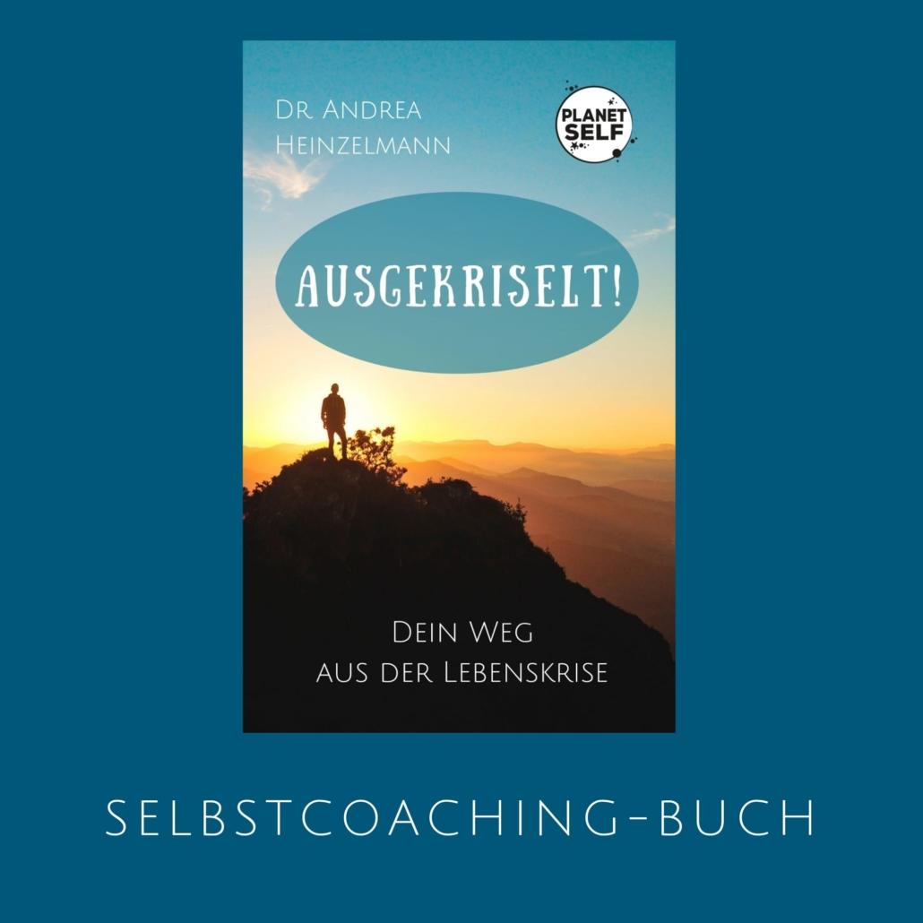 Buch: Dein Weg aus der Lebenskrise